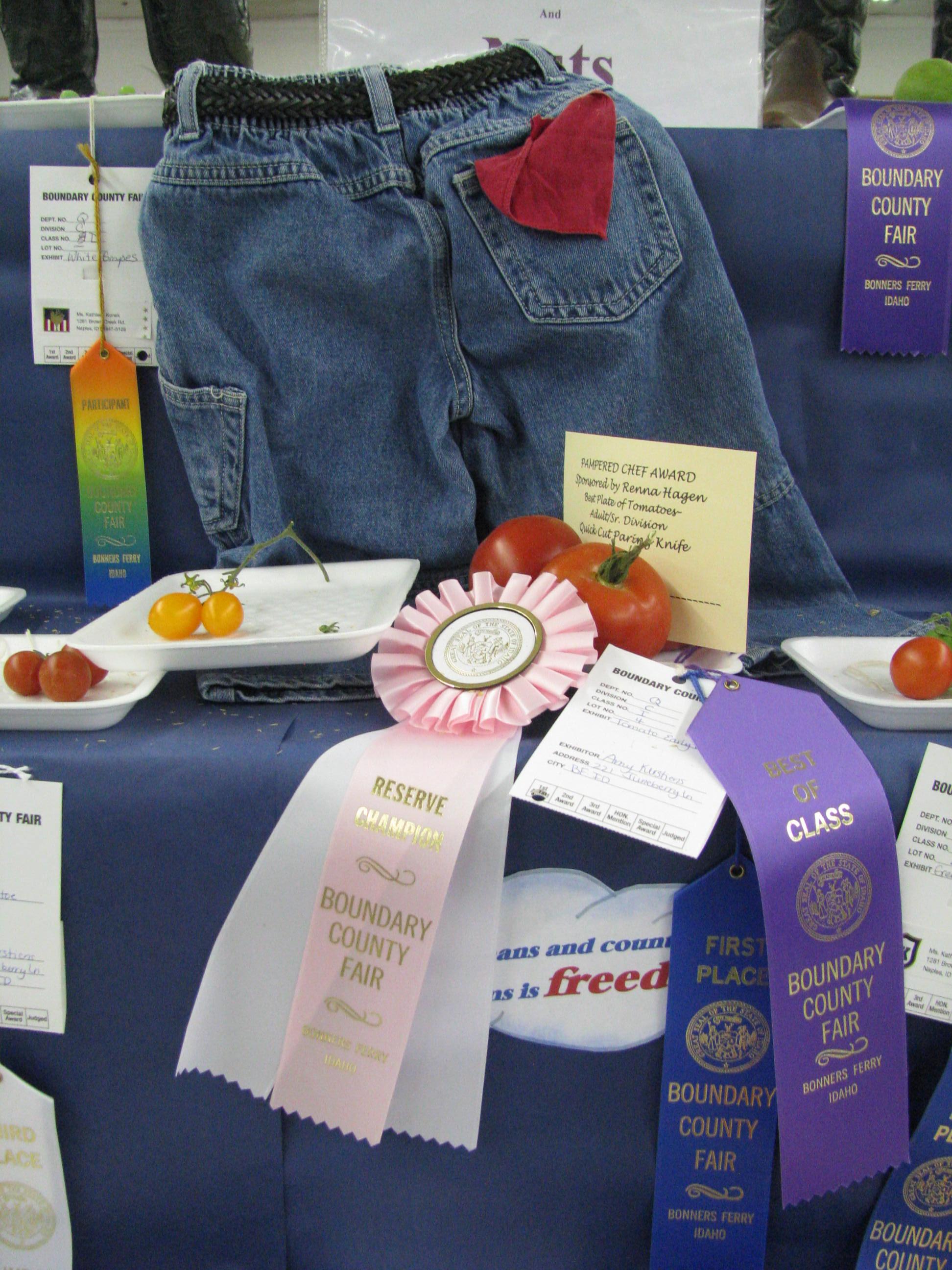Boundary County Fair, 2011